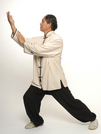 Dr. Yang performing Taijiquan